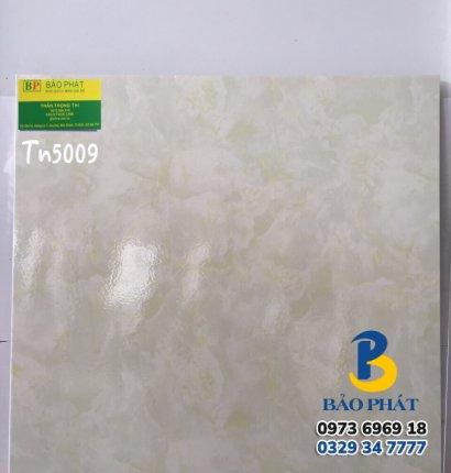 Gạch Lát Nền 50X50 Tn 5009