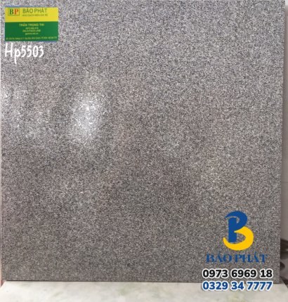 Gạch Lát Nền 50X50 Hp 5503